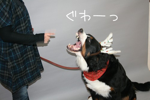 12月4日撮影会-011