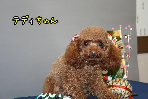 12月4日撮影会-063