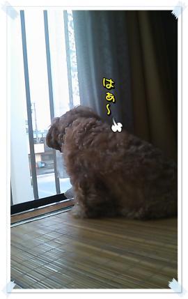 3_convert_20091026130925.jpg