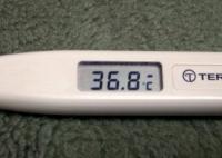 微熱が出た