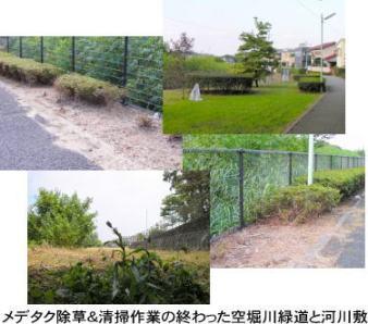 メデタク除草&清掃作業の終わった空堀川緑道と河川敷