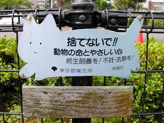 動物遺棄警告看板001