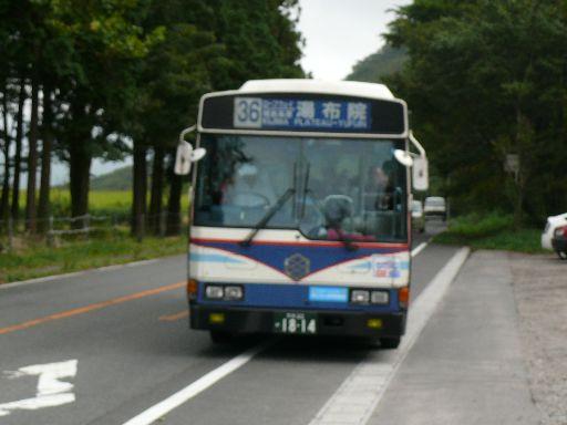 P1230380.jpg