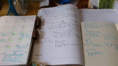 DSC_0313_convert_20111022231757.jpg