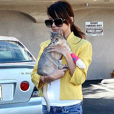 nicole_richie2cats.jpeg
