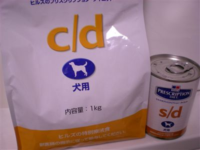 DSCN1908_R.jpg