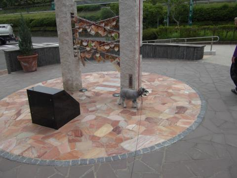 358諏訪湖SA上りconvert_20110619151416
