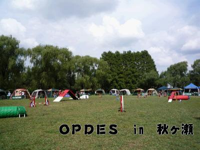 8.OPDES in 秋ヶ瀬