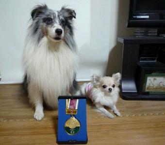 7.メダル