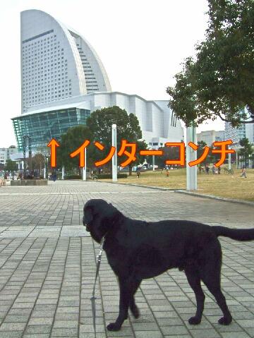 20080308-04.jpg