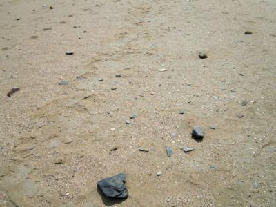 110330_04_beach.jpg