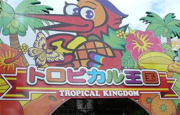 トロピカル王国