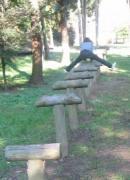公園 043