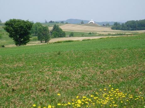 *2008年~遠くに北西の丘が見えてた*