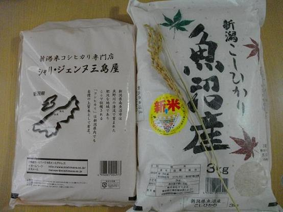 コピー ~ IMGP0025