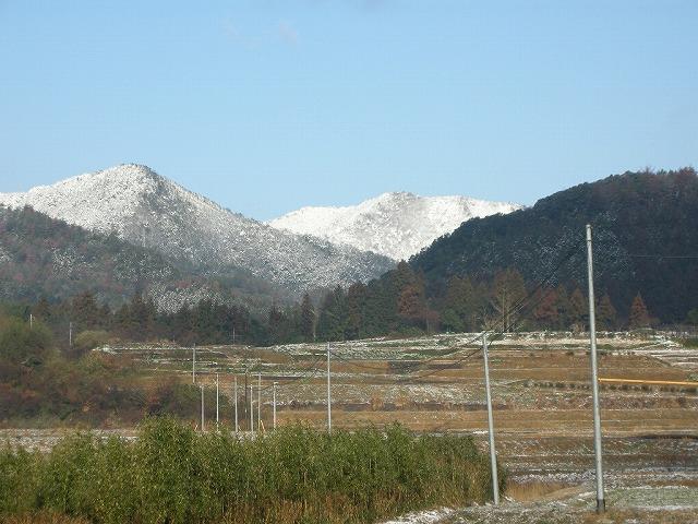 雪の朝楢木080305