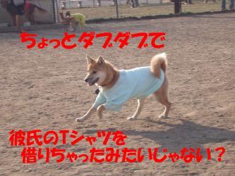 bP3080036.jpg