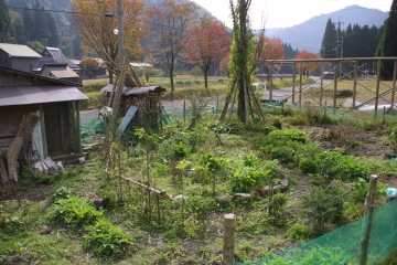 パーマカルチャーをベースに作られた畑。鶏がいます
