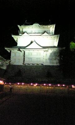雨の小田原城