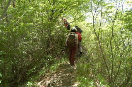 24ハイキングコース