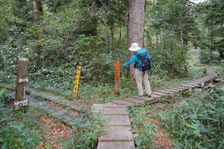 1登山道分岐6