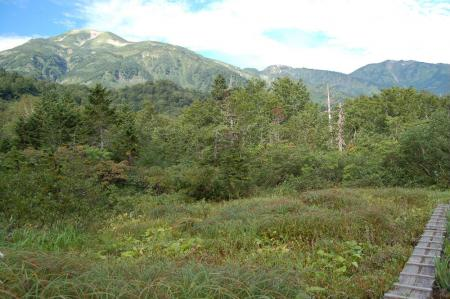1アヤメ平から雪倉岳9