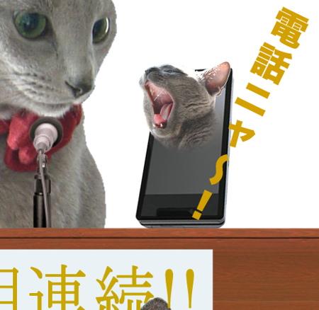 SoftNyank会見7