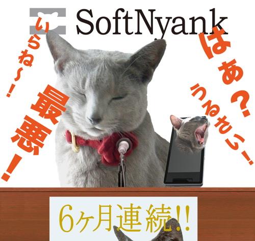 SoftNyank会見8