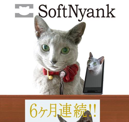 SoftNyank会見9
