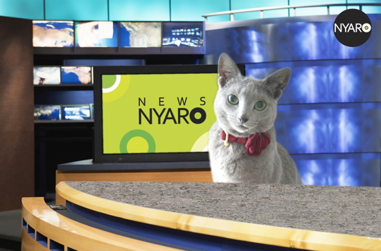 NEWS NYARO1