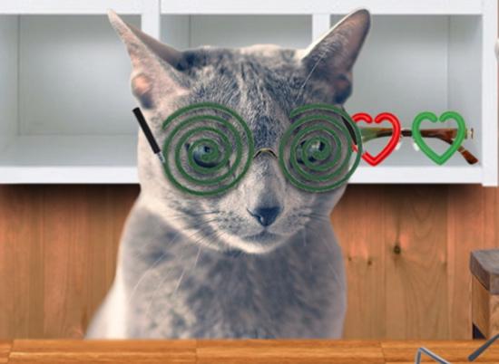 眼鏡屋台14