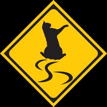 猫標識24