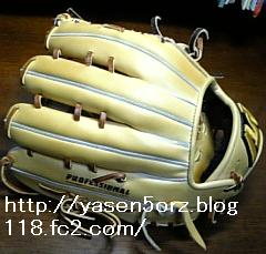 glove4.jpg