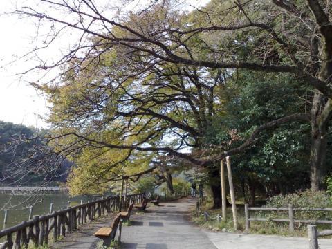 200911081367.jpg