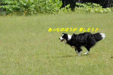 DSC_8734.jpg