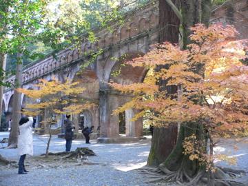 秋南禅寺4