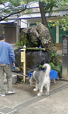 藤森神社2