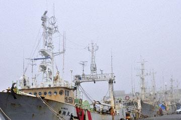 blog Kushiro Port, Fishing Boats_DSC6942-6.28.11 (2).jpg