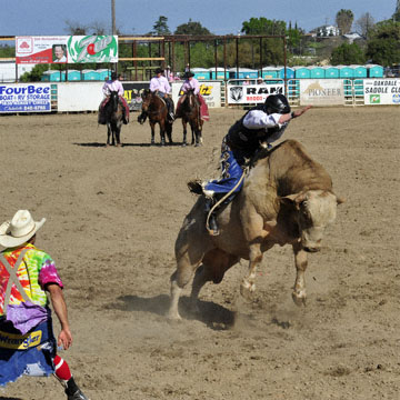 blog Oakdale Rodeo, Kenneth Restani' (NS)_DSC0199-4.10.11 (6).jpg