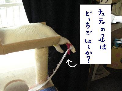 暇つぶし感覚でどうぞo(^-^)o