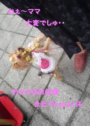 埼玉インター
