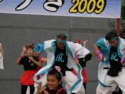 祭りゆうき2009 11