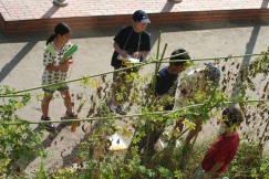 2009_09_24_003.jpg