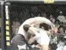 UFC79_NemesisTrailerPV.jpg