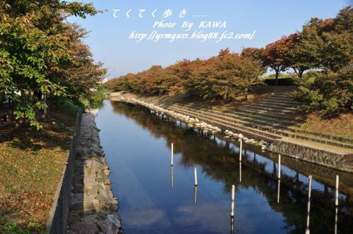 1赤坂泉_4797