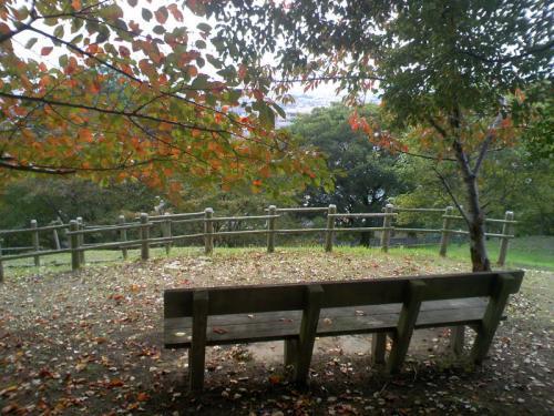 5東山古墳公園DCF_0001