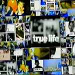 Forum Snowboard - True Life