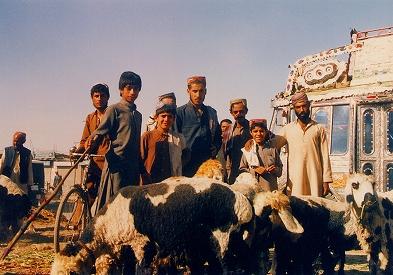 写真キャプション1=うるさいパキスタンの人々