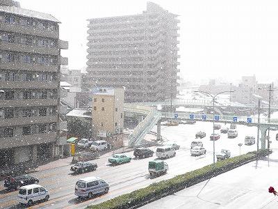 写真キャプション=「冬ソナ1」の働きを称えるように、京都の街に降り注ぐ雪