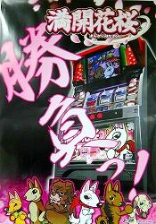 """写真キャプション=ポスターが出来上がった!株式会社ビーム(Be-AM)の""""満開花桜"""""""